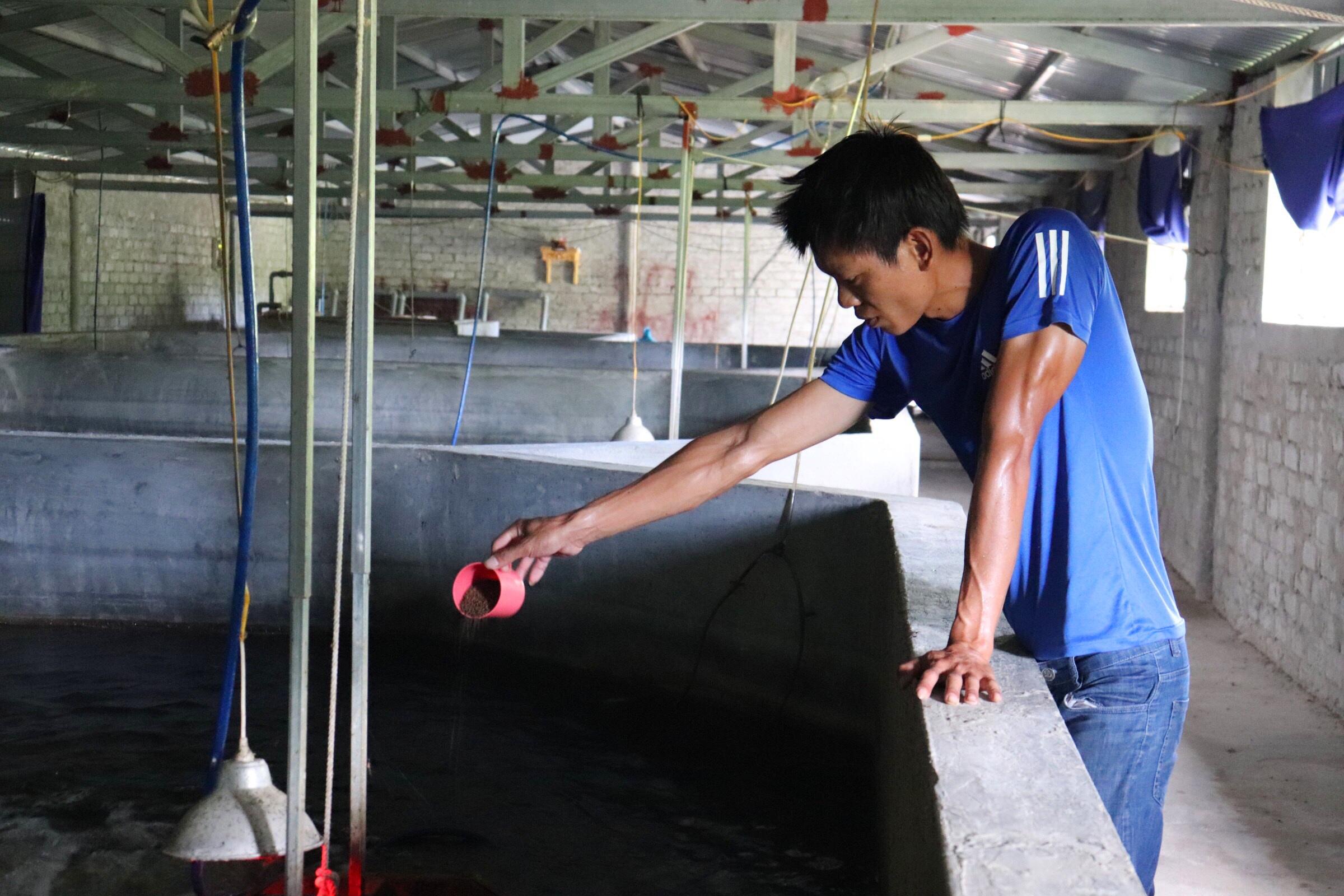 Câu chuyện khởi nghiệp của chàng kỹ sư với 4.000 con cá chình-1