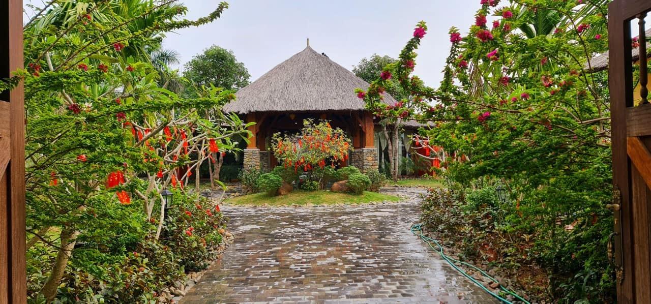 Vợ chồng Hà Nội về ngoại ô xây nhà mái lá, có đủ bể bơi xanh mát-1