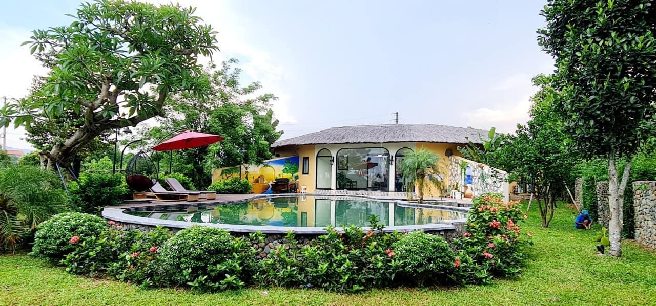 Vợ chồng Hà Nội về ngoại ô xây nhà mái lá, có đủ bể bơi xanh mát-7