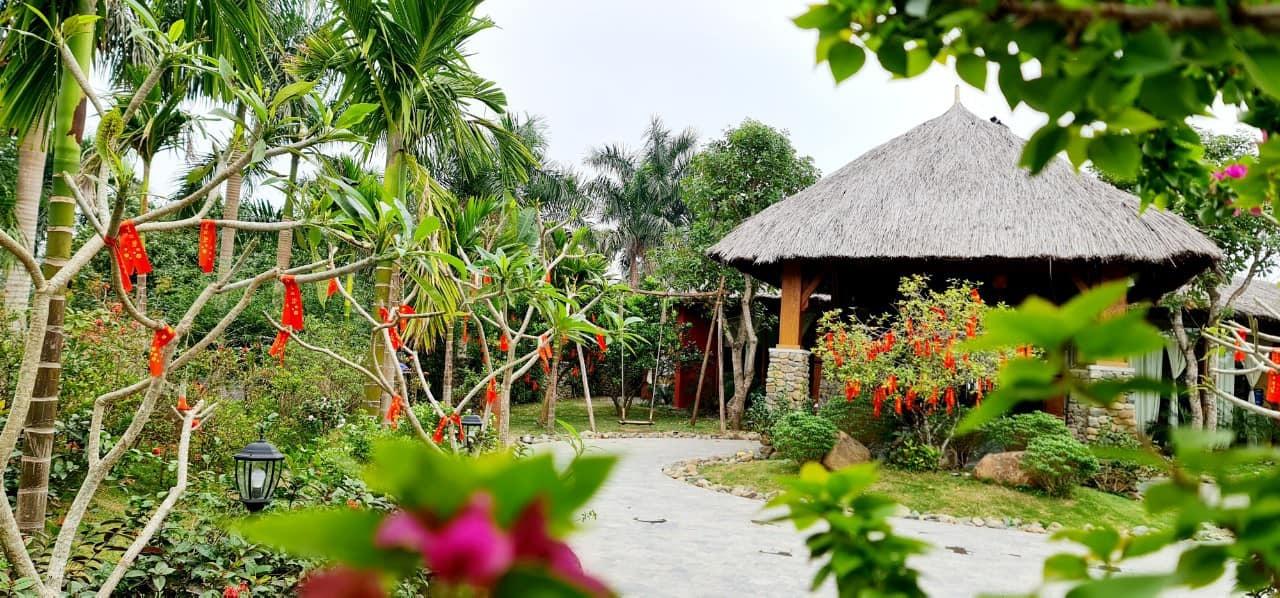 Vợ chồng Hà Nội về ngoại ô xây nhà mái lá, có đủ bể bơi xanh mát-9
