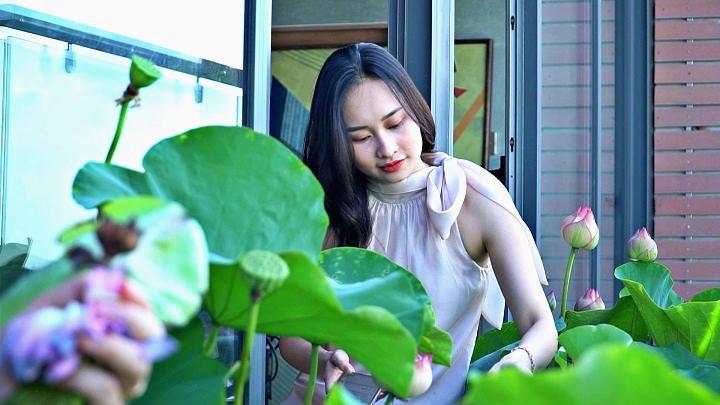 Vợ chồng Hà Nội trồng hồ sen trên penthouse 300 m2 'du lịch' tại gia