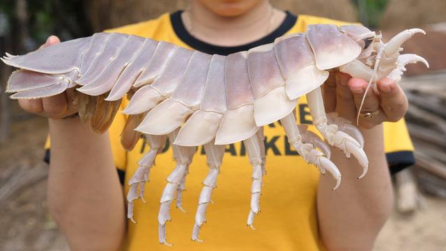 Hình dáng đáng sợ, xấu xí, loài sinh vật biển này lại được săn đón vì ngon hơn cả tôm hùm-3
