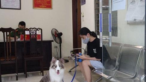 Dắt chó đi dạo, cô gái bị phạt 2 triệu đồng trong ngày đầu Hà Nội giãn cách: