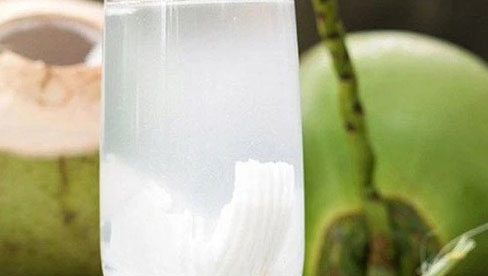 Uống nước dừa sau tiêm phòng Covid-19 có tác dụng gì?
