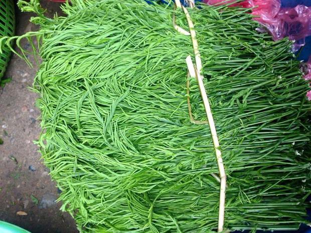 Ngã ngửa 6 loại rau đặc sản mọc hoang giá đắt hơn thịt-3