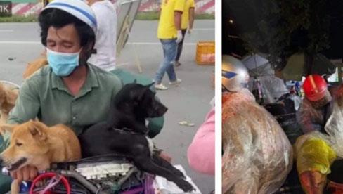 Hành trình về Cà Mau đầy đau lòng của 15 chú chó: Chính quyền địa phương xác nhận đã tiêu huỷ