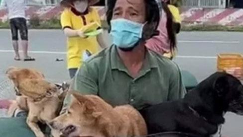 Vụ 15 chú chó bị tiêu hủy ở Cà Mau: Trưởng trạm y tế xin nghỉ việc vì không chịu nổi áp lực dư luận