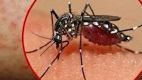 Bé gái 9 tuổi tại Hà Nội nguy kịch vì sốt xuất huyết: Bác sĩ gửi lời cảnh báo khẩn thiết tới phụ huynh